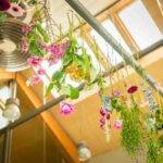 Fotograaf afscheid Eindhoven bloemen uitvaart